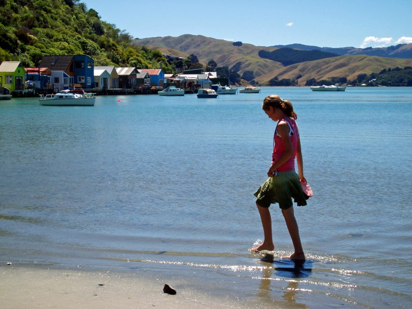 Pauatahanui Inlet, Porirua, New Zealand Photo: Robyn Moore
