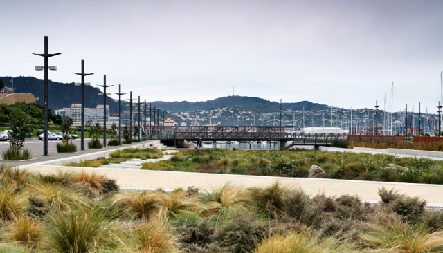 Waitangi Park Wellington Aotearoa NZ - Indigenous vegetation - Image via WA landscape architects