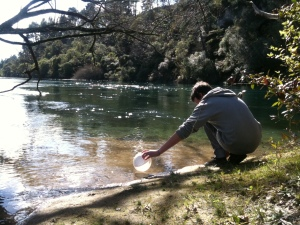 Lake Taupo - cleaning up its act