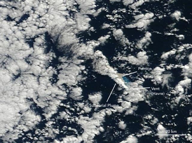 Havre Seamount Kermadec Seamount Range - image via wired.com
